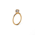 """Equal to the Core"" Apple Ring - Food for Thought Collection - Pavé the Way® Jewelry"