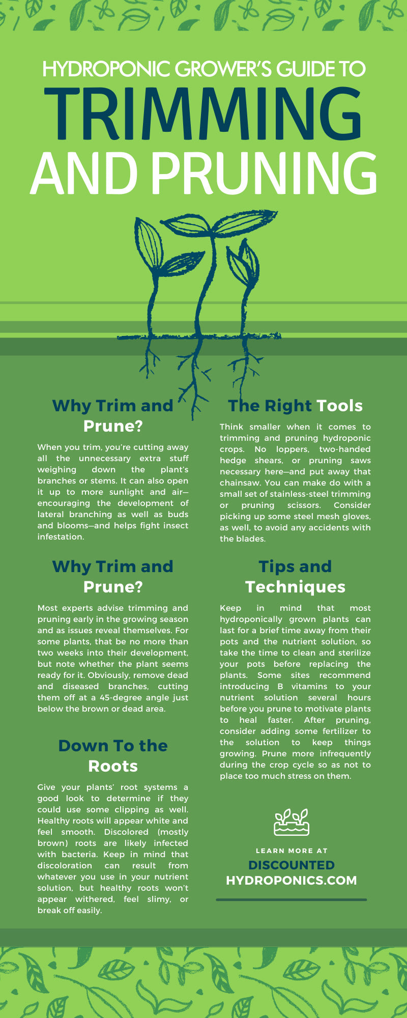 Hydroponic Grower's Guide to Trimming and Pruning