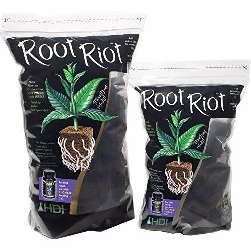 Propagation and Cloning - Root Riot