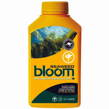 bloom seaweed 1 liter