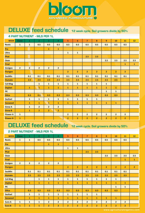 bloom yellow bottles feeding chart
