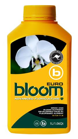Bloom Euro B Yellow Bottles