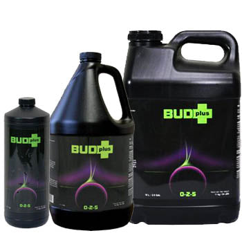 Nutri Plus Bud Plus Liquid