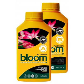 bloom flower a 1 liter
