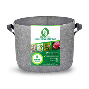 Biofloral Budget Gray Fabric Pots