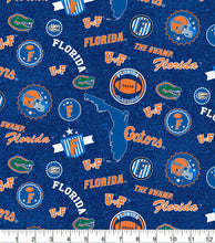 Load image into Gallery viewer, UF Florida Gators Face Mask with removable pocket filter and nose wire | Adjustable | USA made | Quick Ship | Machine Washable