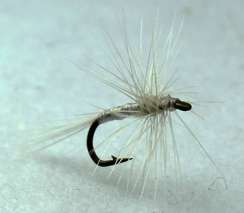 Cream Midge Dryflyonline.com Samaki Flies Fly Fishing