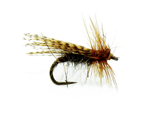 Spent Partridge Caddis Fly