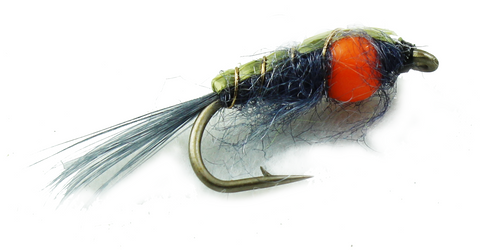 Generic Scud with Egg Sack,Dryflyonline.com,Discount Trout Flies