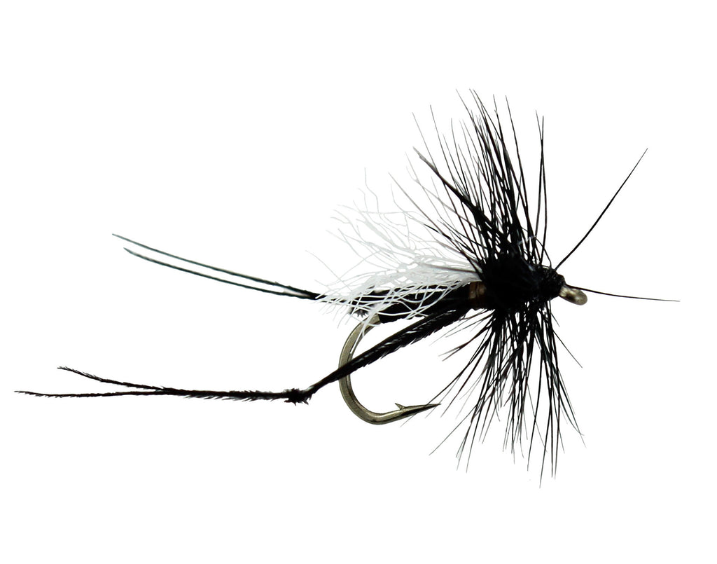 Hawthorn Fly, Black Dry Fly, Discount Trout Fly, Small ...