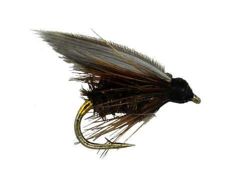 Lead Wing Coachman, Wet Fly, Dryflyonline.com, Discount Flies, Wholesale FLies