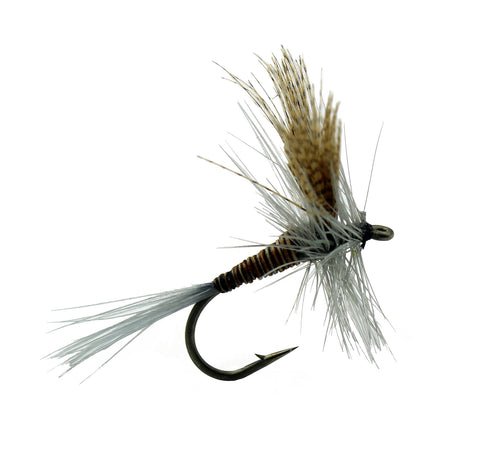 Quill Gordon Dry Fly,Dryflyonline.com,Wholesale Flies,Discount Trout Flies
