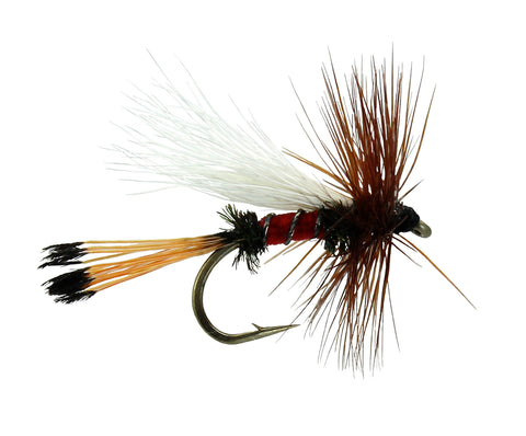 Royal Coachman Trude,Discount Trout Flies,Dryflyonline.com