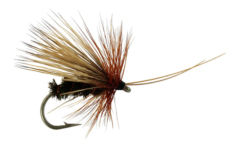 Sedge Peacock Sedge,Dry Fly,Discount Trout Fly, Wholesale Dry Fly