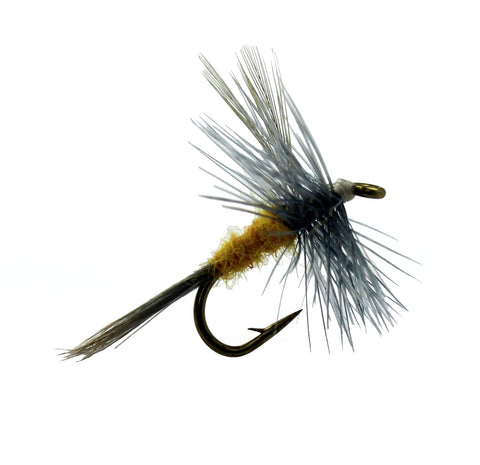 Sulpher Mayfly Dun, Discount Trout Flies for Fly Fishing ...
