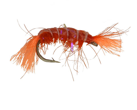 UV Scud Orange,Dryflyonline.com,Wholesale,Discount Flies