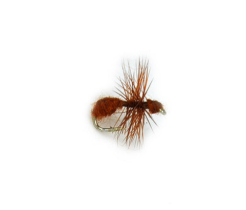 Brown Ant Fur Body Fly