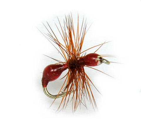 Red Ant Hard Body Fly,Discount Trout Flies,Ant Pattern