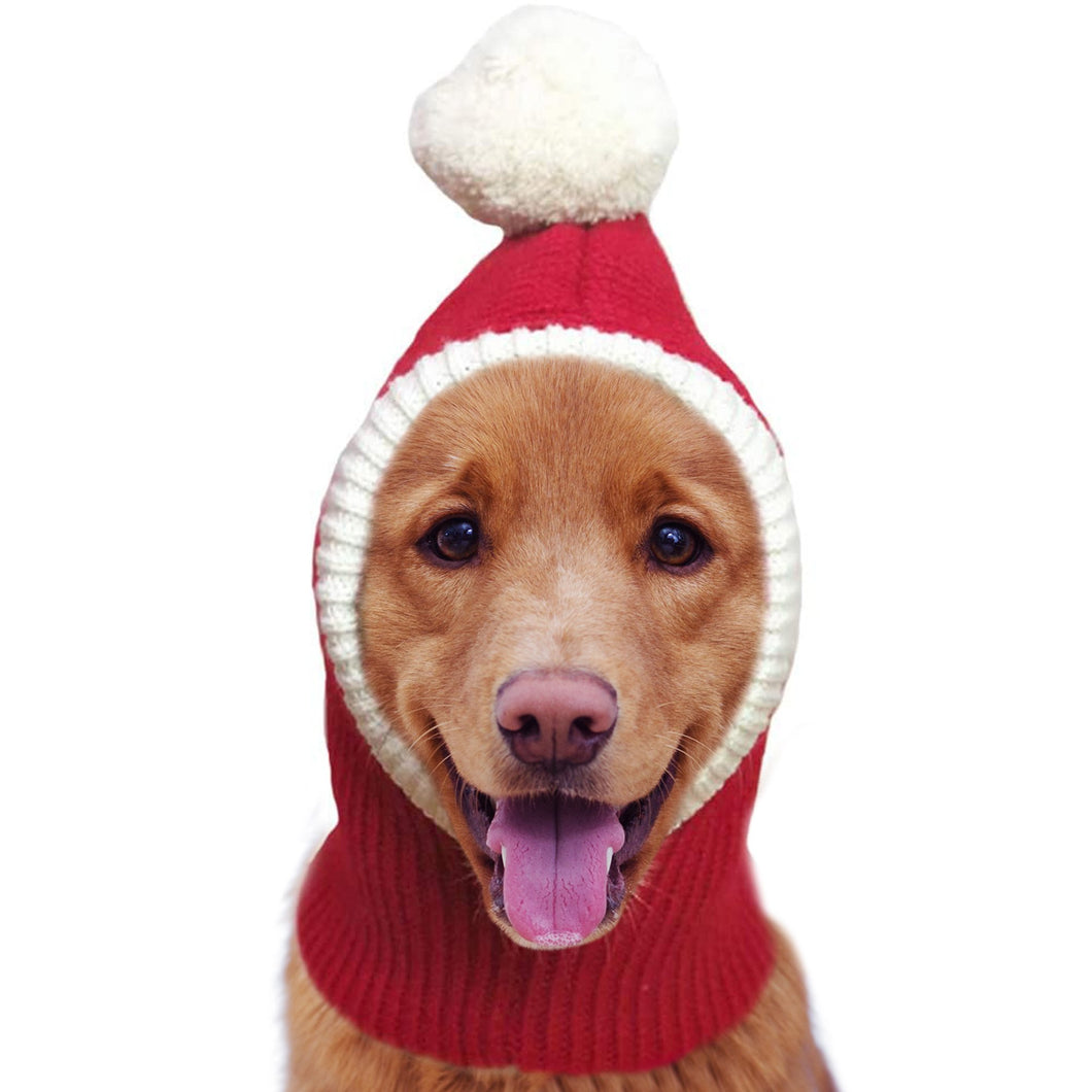 Christmas Winter Hat Made For Dogs Of All Sizes