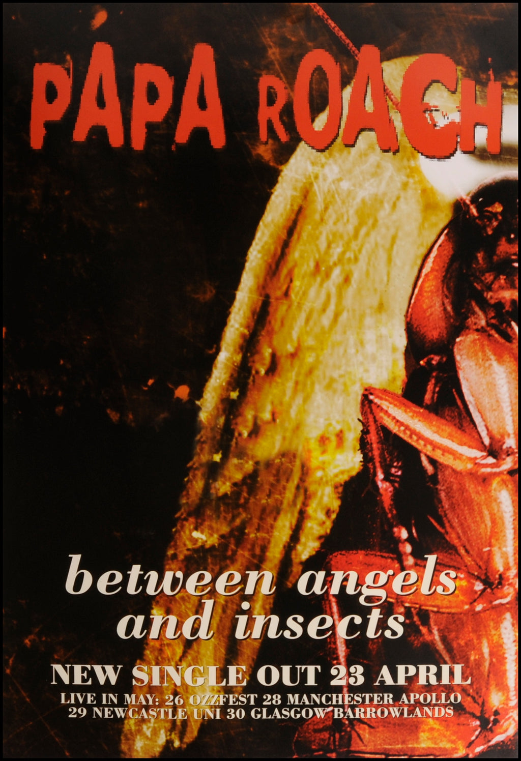 Papa Roach poster - Between angels and insects
