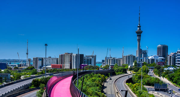 auckand-cycle-way-path-green-spaces
