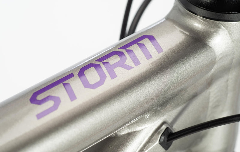 Norco Storm 1 W Cross Country Bike Silver/Violet (2020)