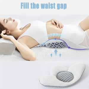 Buckwheat Lumbar Support Sleep Pillow