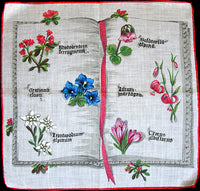 Latin Book of Flowers Vintage Handkerchief