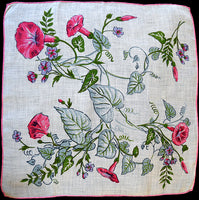 Morning Glory w Curly Vines Irish Linen Vintage Handkerchief