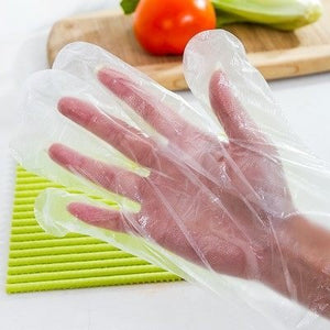 Latex Free Disposable Gloves (100pcs)