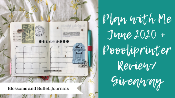 blossoms and bullet journal