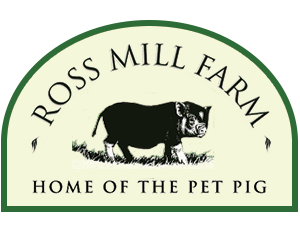 Ross Mill Farm - Home of the Pet Pig