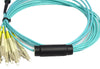 OM3 - 10Gb Multimode (50/125) - 12 Strand - Fiber Optic Cable - MPO to 12xLC - Plenum