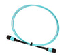 OM4 - 40Gb Multimode (50/125) - 12 Strand - Fiber Optic Cable - MPO to MPO
