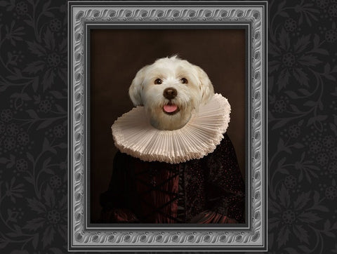 Unique Classic Renaissance 18th Century Pet Portrait