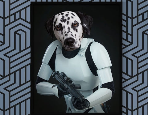 Unique Star Wars Storm Trooper Pet Portrait