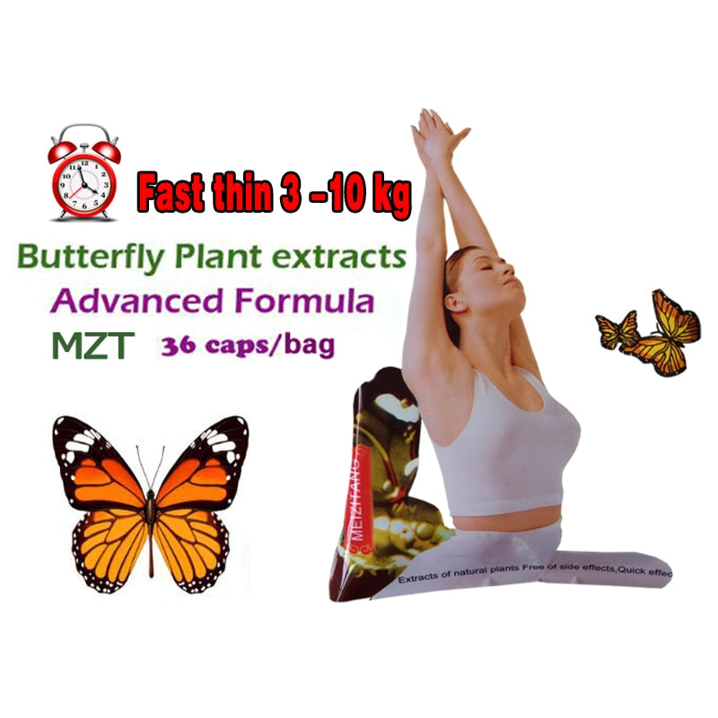 100% effective advanced slimming the Strong butterfly wild plant botanic extracts fat burning not daidaihua