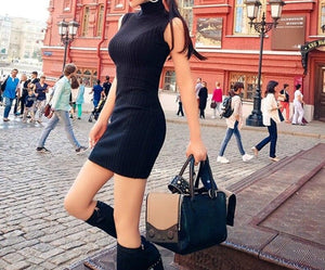 Necessary Knitted Sleeveless Bodycon Turtleneck Dress
