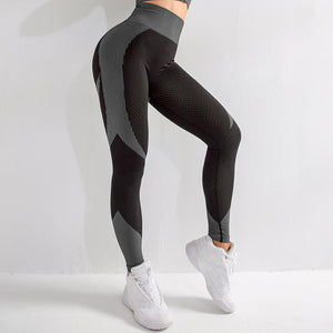 Necessary Keep Warm Seamless Workout Leggings Leggings Shopping Outlets Store