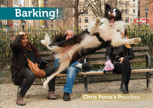 Barking! Chris Porsz's quirky images of Pooches