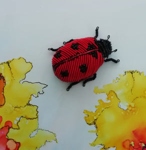 Ladybird by Sue Keen