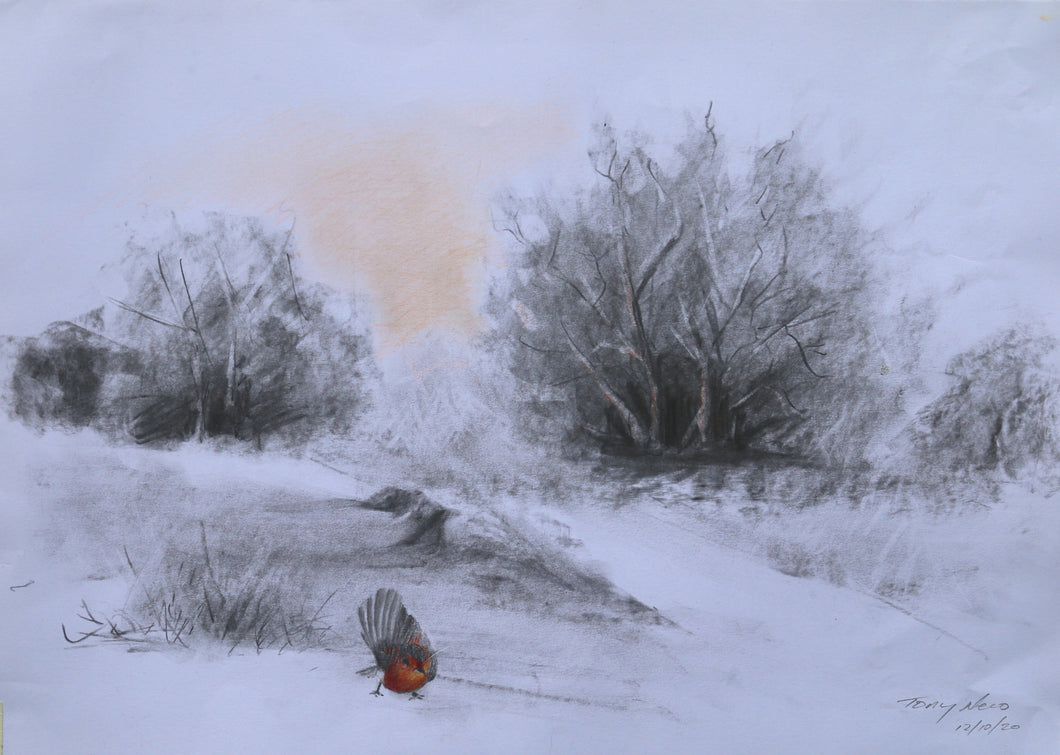 Robin the Snow mounted Giclee print by Tony Nero