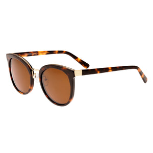 Bertha Lucy Polarized Sunglasses - Dark Brown Tortoise/Brown  - BRSBR022GD
