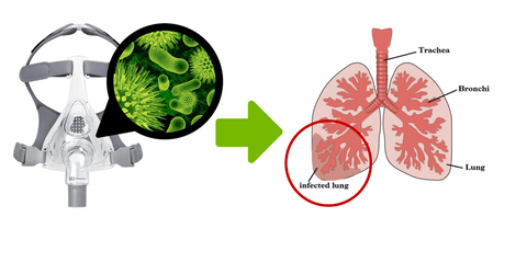 graphic showing that bacteria on your CPAP mask can affect your lungs