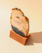Banded Agate Slice with Stand - Anza Studio