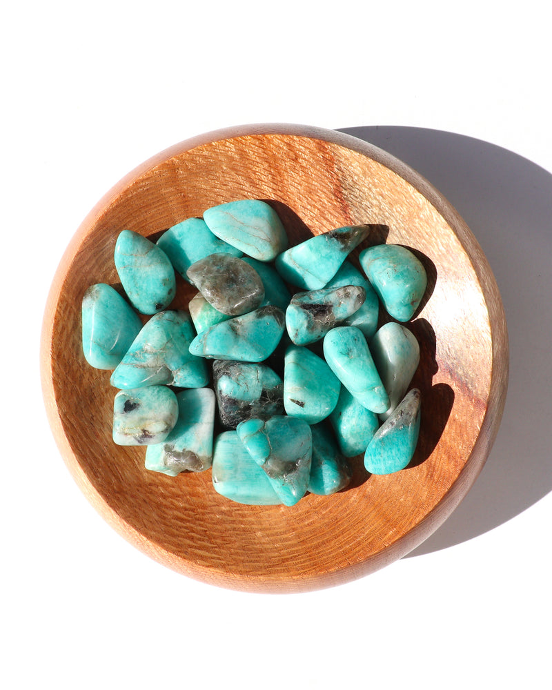 Amazonite Tumbled Stones - Anza Studio