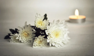 Bach Flower Remedy for grief