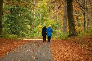walk in nature to boost immune health