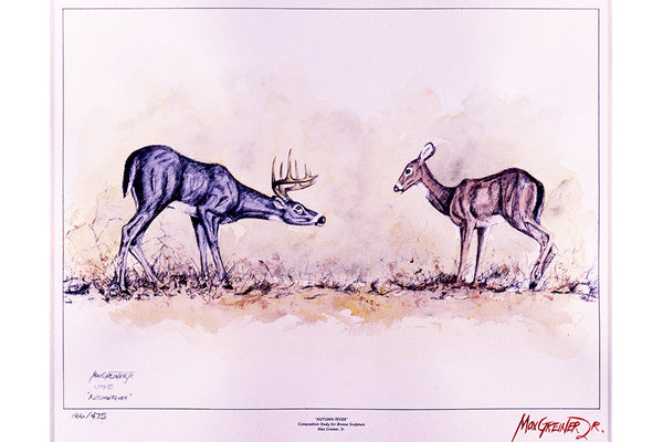 "Wildlife: Drawing Print  ""Autumn Fever"" Whitetail Deer"