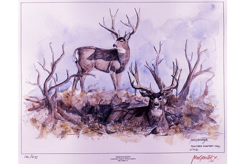 "Wildlife: Drawing Print  ""Mountain Muleys"" (Mule Deer)"